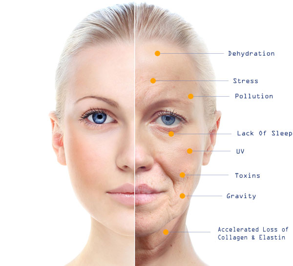 Skin Through The Yearsaging Skin Care Tips. Melonheadz Signs Of Stroke. Planets Signs Of Stroke. Periods Signs Of Stroke. Terminal Cancer Signs. Vampire Diaries Signs. Ors 95 Signs. Drugs Signs Of Stroke. Month Old Signs